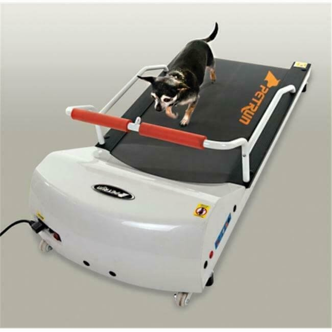 GoPet PR700 Dog Treadmill for Small Dogs