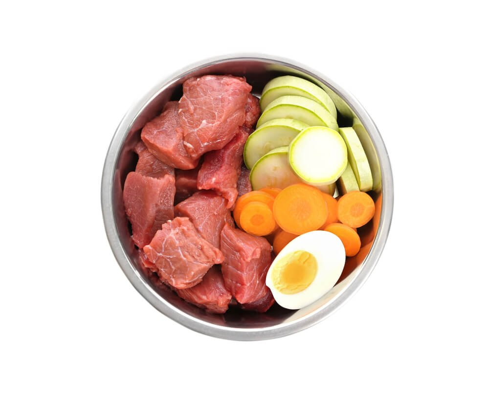 Dogs dinner that includes a boiled egg