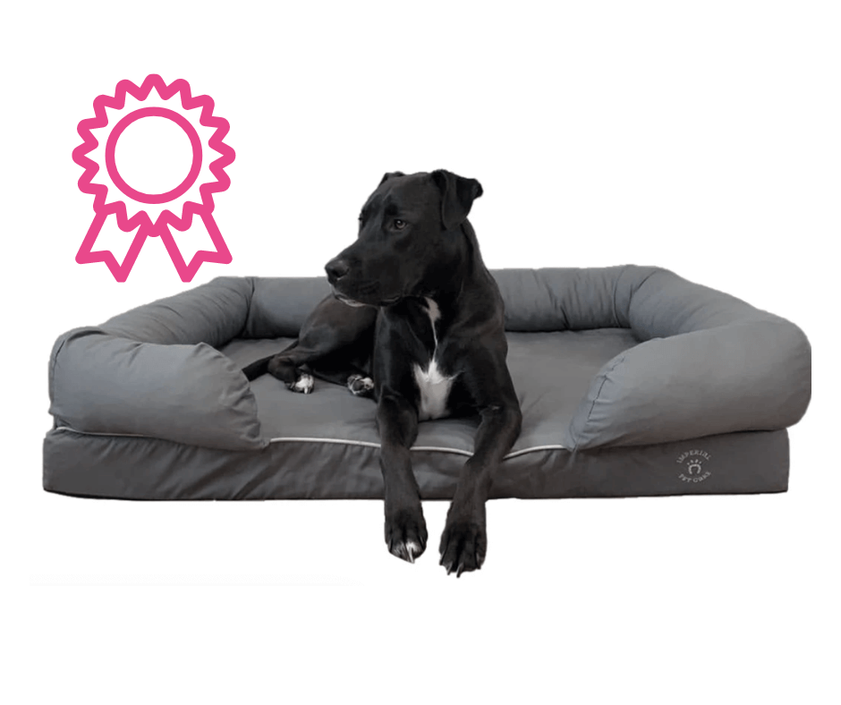 Imperial Orthopedic Dog Bed