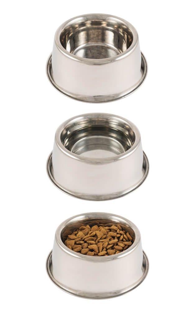 3 dog bowls