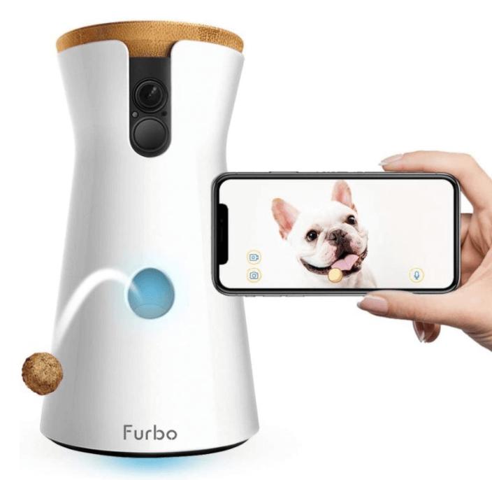 Dog Camera Gift