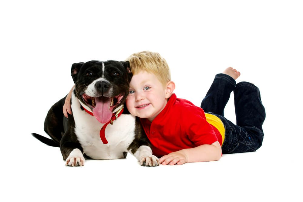 Young boy and a Staffordshire Bull Terrier hugging.