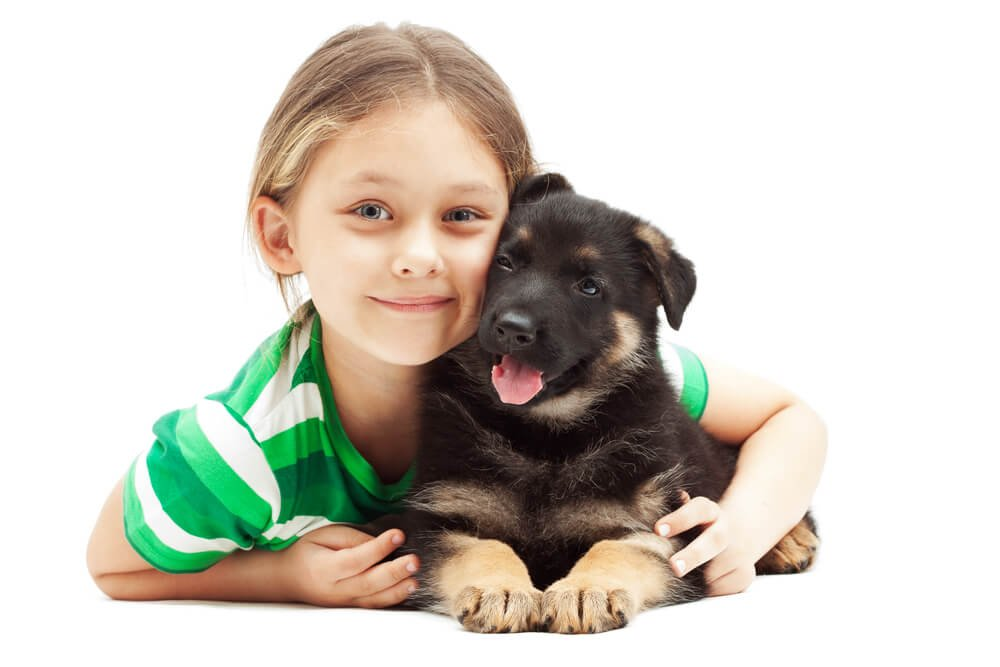 little girl hugging a German Shepherd puppy.
